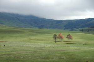 Muntanyes de Kwuala Zulu Natal